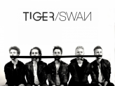 Tigerswanmusic